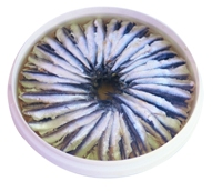 Anchovies in Oil2