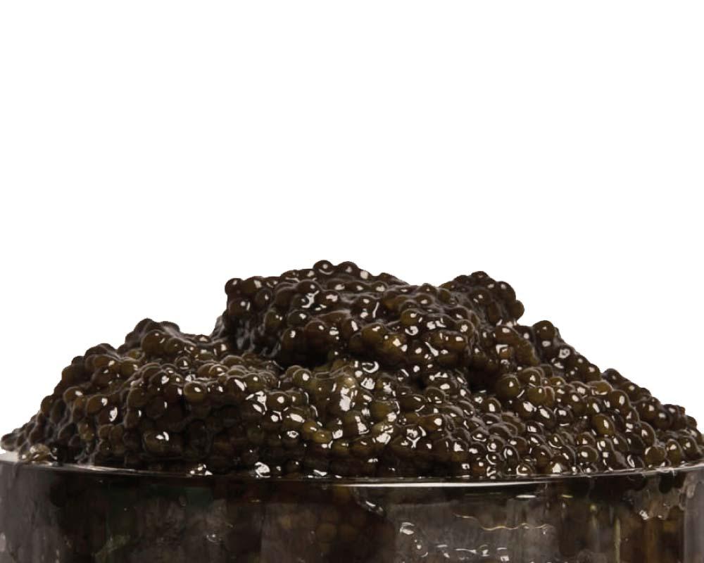 Black   Bowfin Roe Caviar