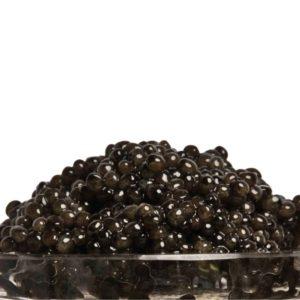 Classic Russian Ossetra Caviar - Acipenser Gueldenstaedtii