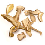 dried_porcini_fancy