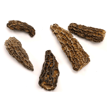 Dried Morel Mushrooms 2 Ounces for $46