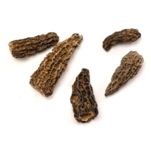 2 Ounces of Morel Mushrooms for $48