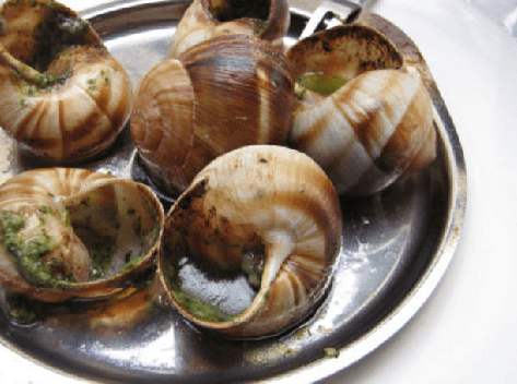 national-escargot-day