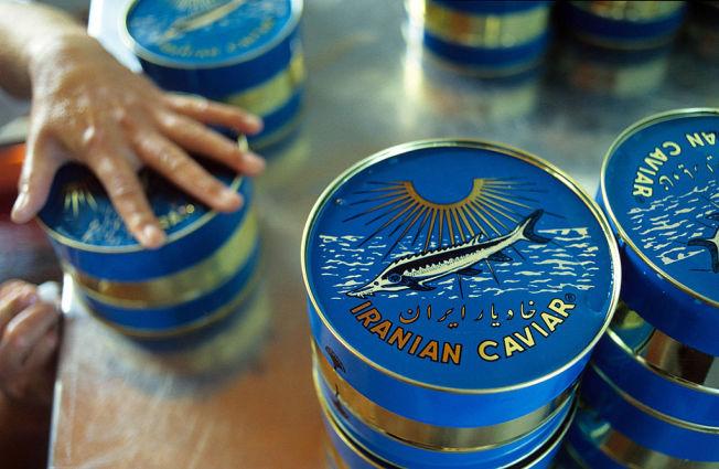 iranian-caviar-tins
