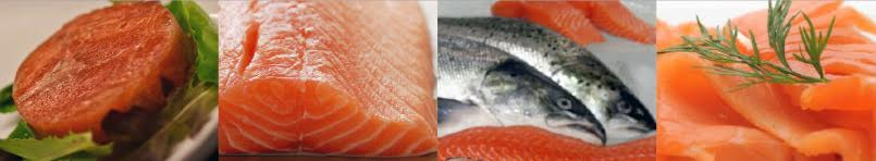 salmon and fish