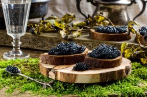 Caviar appetizers