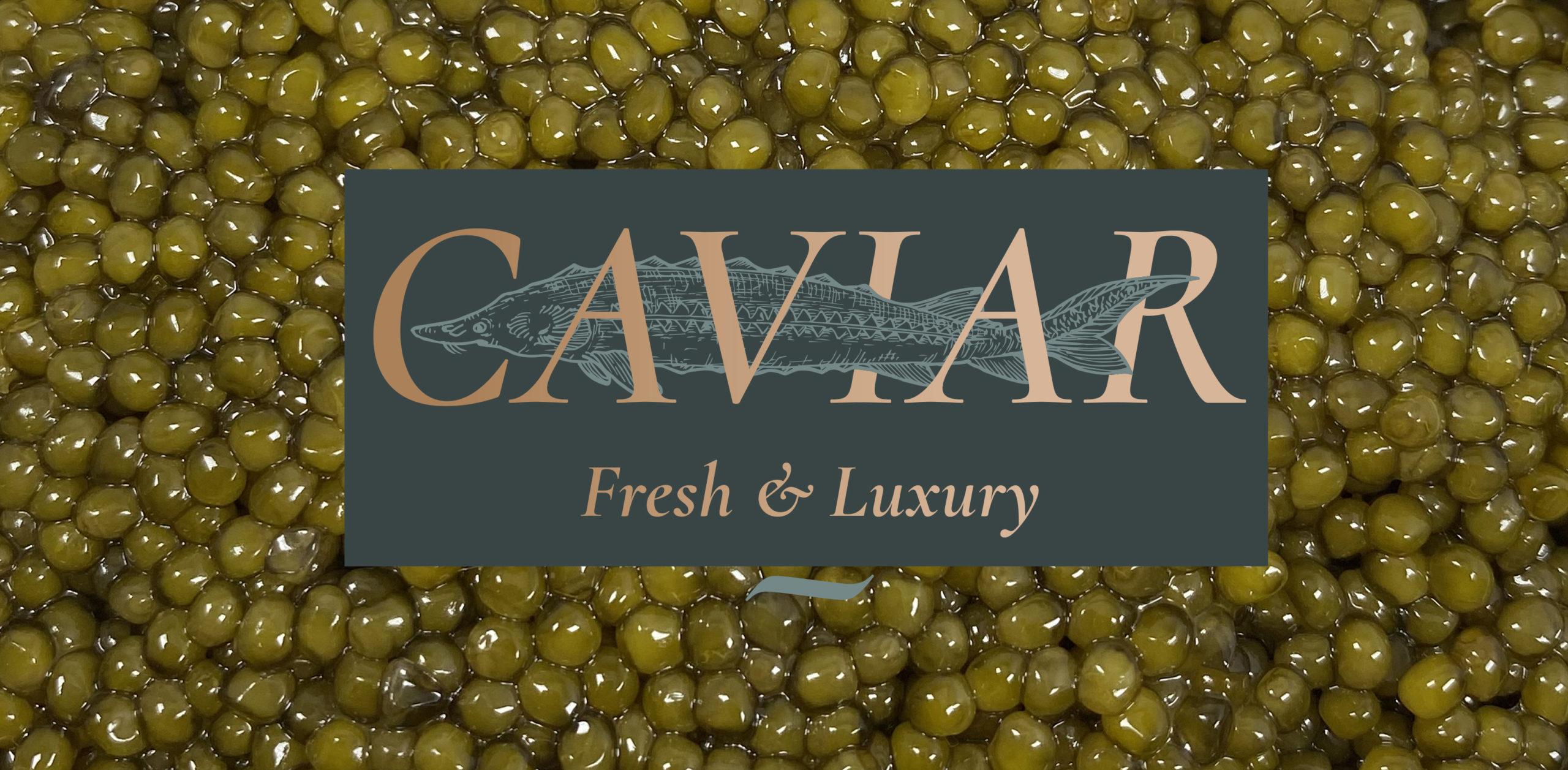 ORIGIN OF CAVIAR HISTORY cover scaled - Caviar Lover