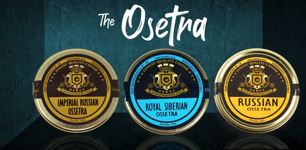 The ultimate guide about Osetra Caviar COVER - Caviar Lover