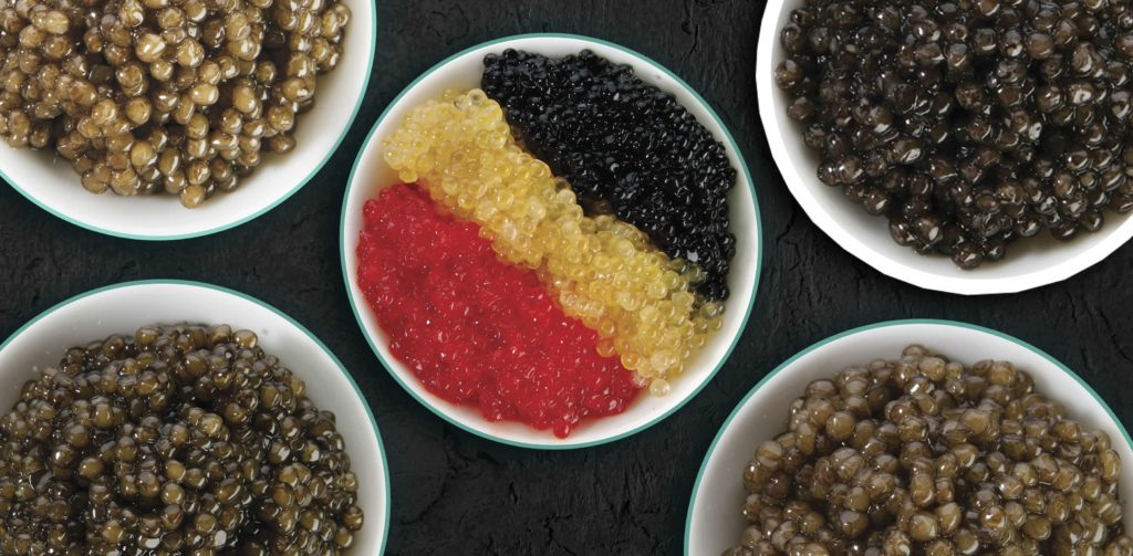 Understanding the role of color in caviar COVER 1 - Caviar Lover