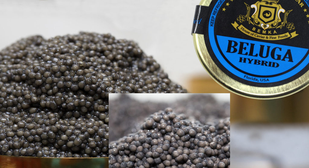 Beluga Caviar One of the most sophisticated COVER - Caviar Lover