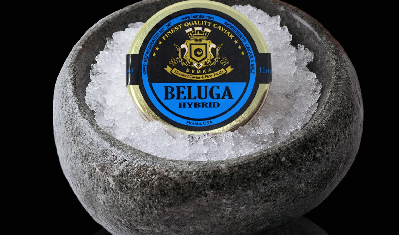 Beluga Caviar Huso Huso in the USA 1 - Caviar Lover