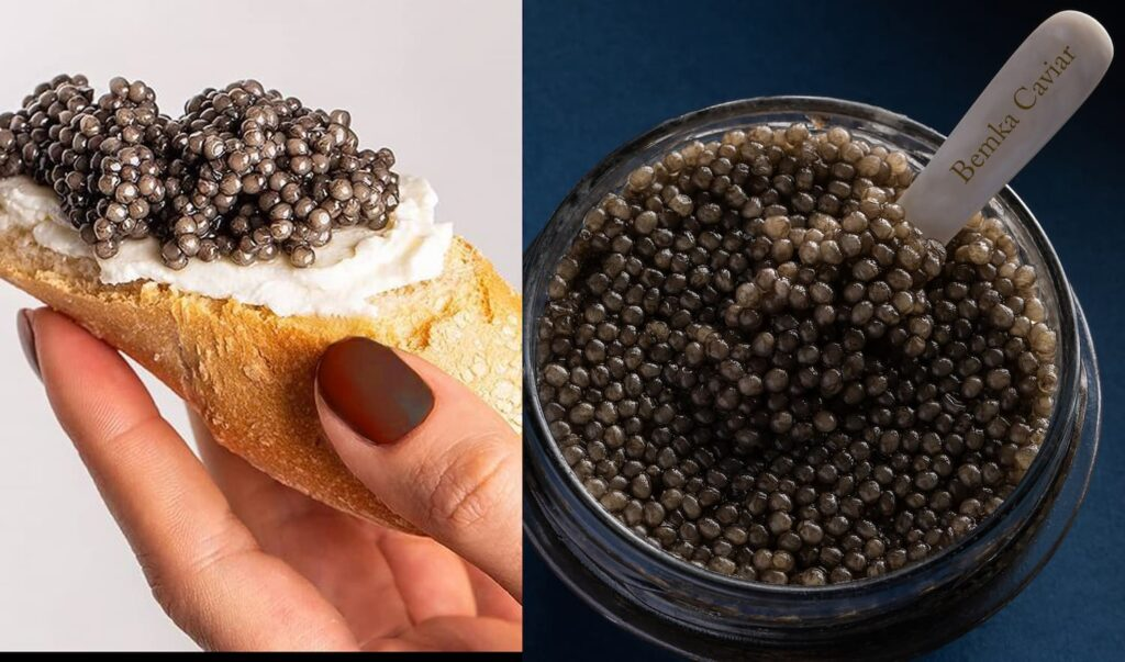 Beluga Caviar Huso Huso in the USA 2 - Caviar Lover