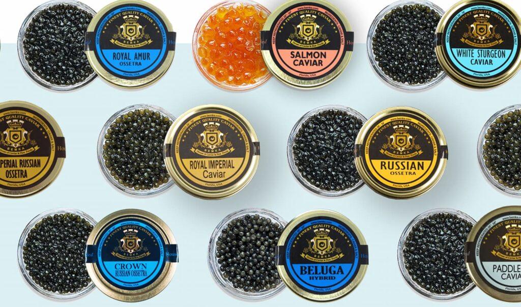 Beluga Caviar Huso Huso in the USA 4 - Caviar Lover