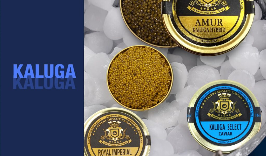 The most common types of Caviar 2 - Caviar Lover