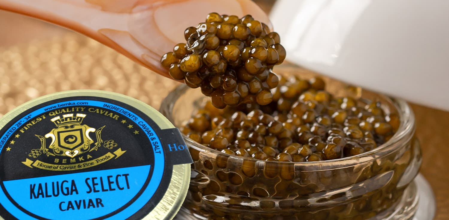 Kaluga Caviar How is it different from other types COVER - Caviar Lover