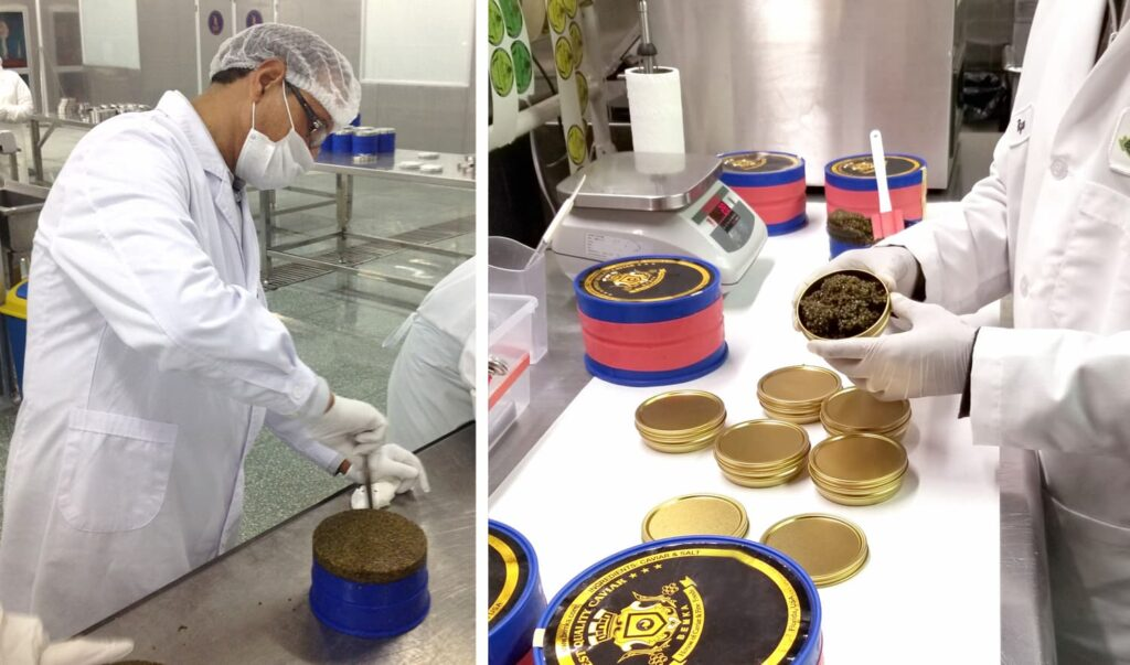 National Caviar Day luxurious and delicious 2 - Caviar Lover