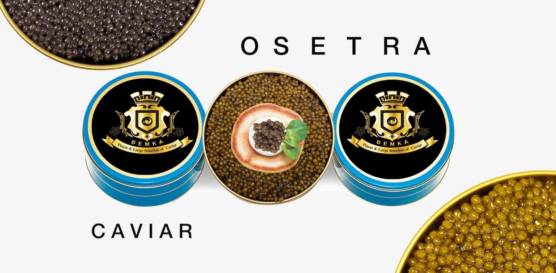 How to buy Osetra Caviar COVER - Caviar Lover