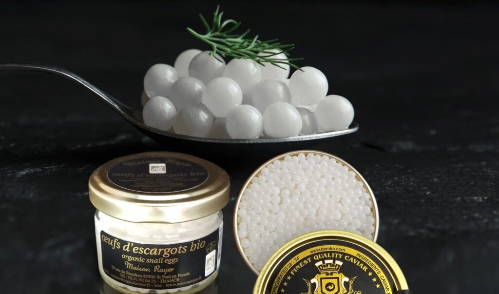 Snail Caviar All about this type of Caviar 2 - Caviar Lover