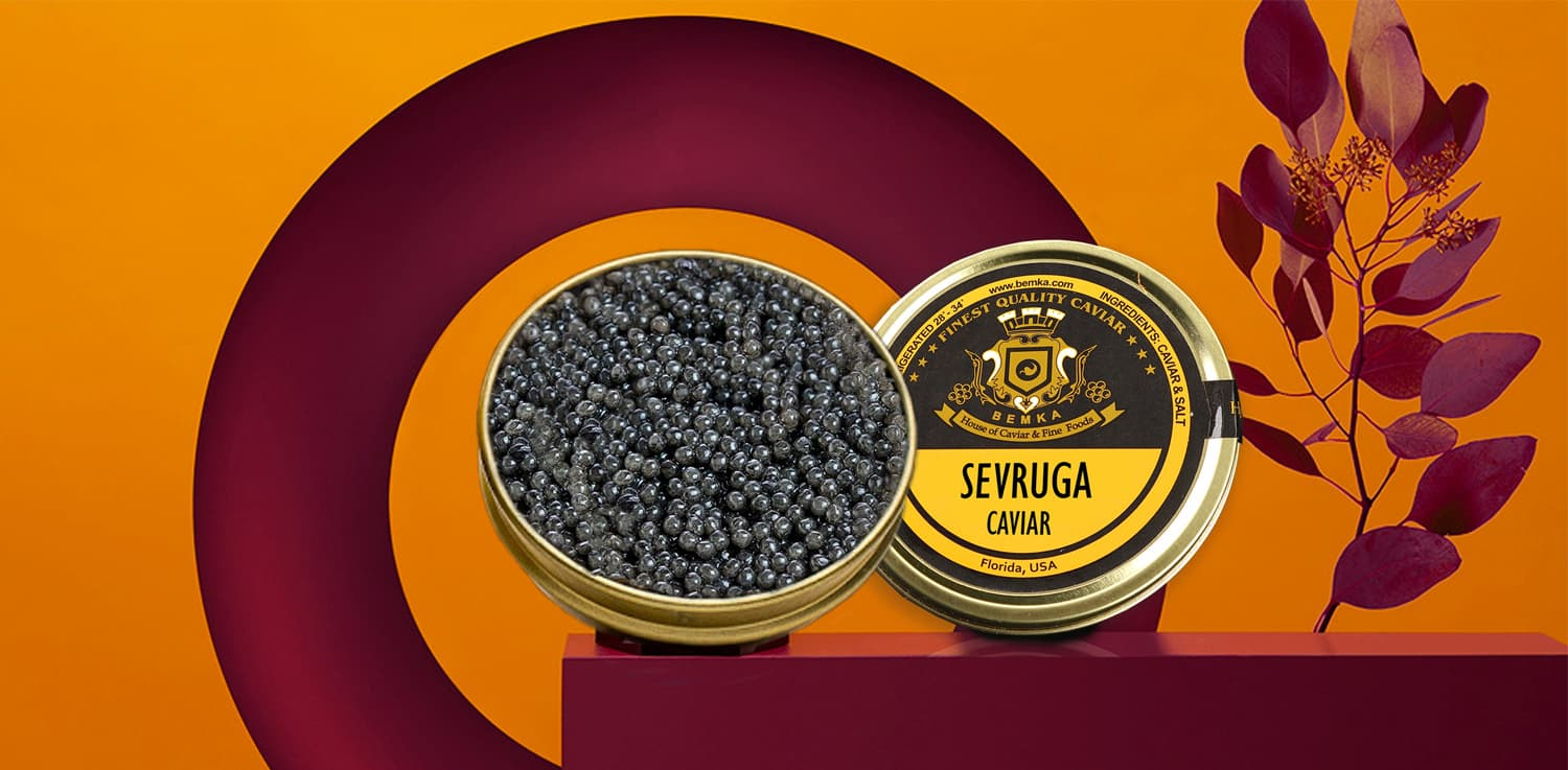 Curious facts about Sevruga Caviar COVER - Caviar Lover